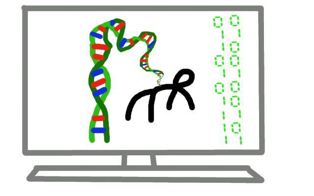 نحوه كد نويسي الگوريتم  ژنتيك