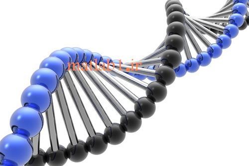 آموزش کامل الگوریتم های ژنتیک به زبان ساده