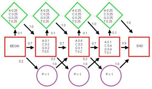 مدل مخفي مارکوف و الگوريتمهای آموزش